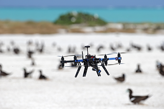 UAV used to capture aerial imagery of nesting seabirds in NW Australia